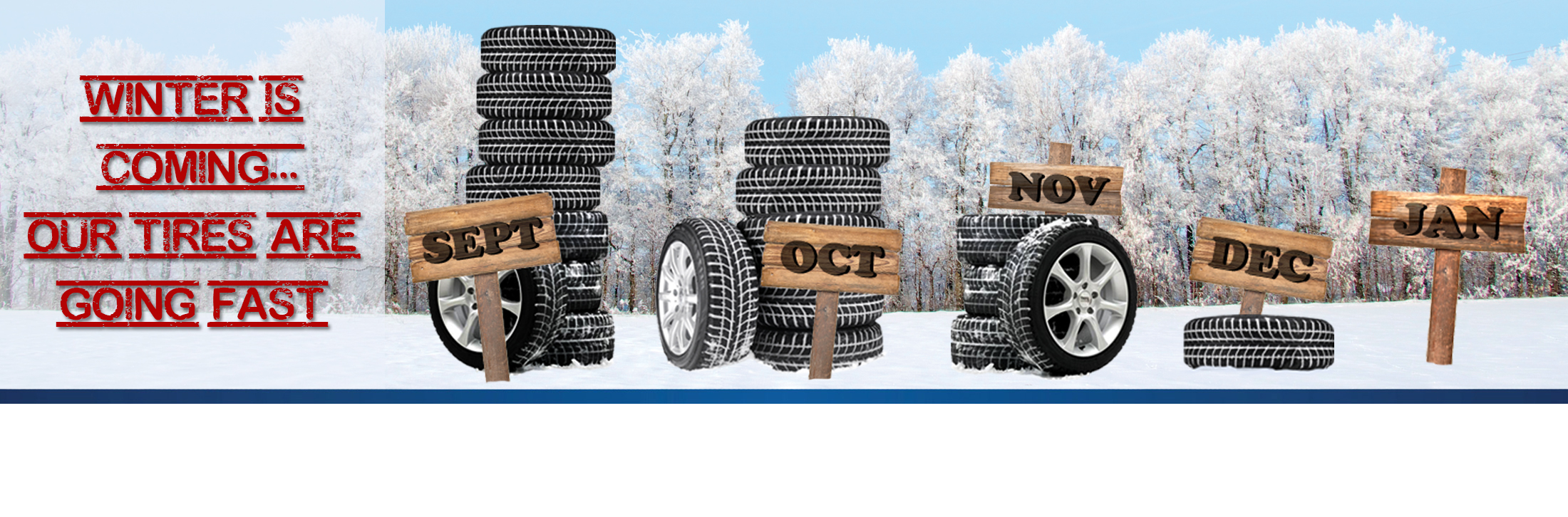 Winter is Coming Winter Tire Sale